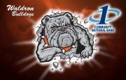 Waldron bulldogs logo with the First National Bank at Paris logo